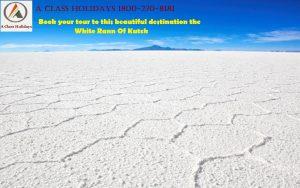 white rann of kutch